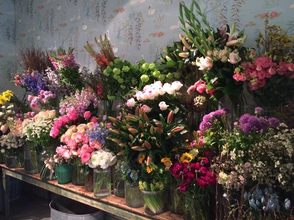De bloemenwinkels in en rondom breda stappen shoppen breda for Bloemist breda